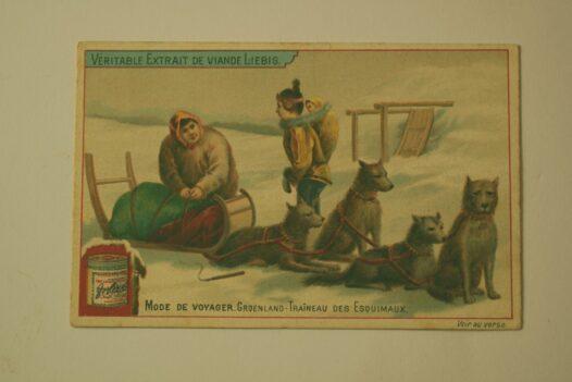 Eskimo Dog Sled Card