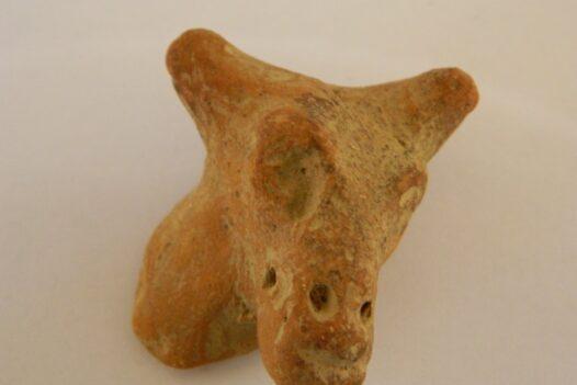 Terracotta Animal Head from Charsada