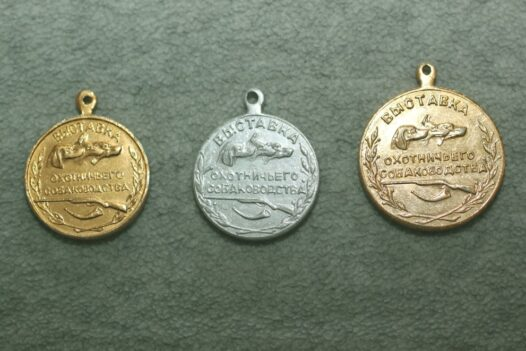 Hunting Dogs Exibition 3 medals from ex- URSS